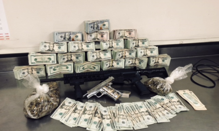 Officers find 1500 marijuana plants, guns in Merced home
