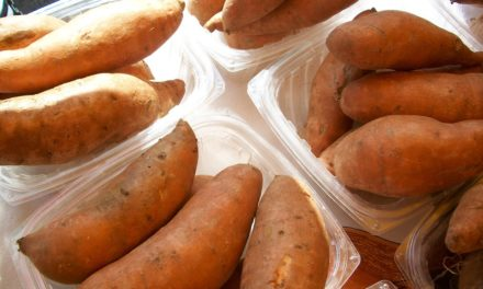 Livingston's 7th Annual Sweet Potato Festival Set To Take Place