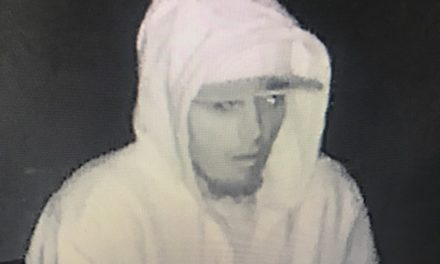 SUSPECTED BURGLAR ATTEMPTS TO BREAK INTO LIVINGSTON BUSINESS